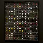 Plectrum collection, 1983-2011_1